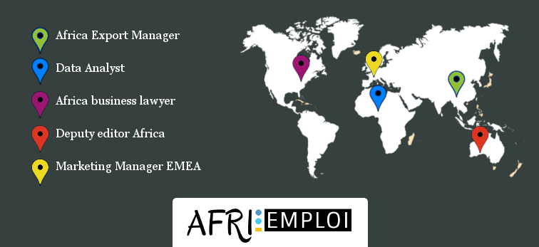 afri-emploi.com, executives management africa